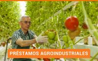 Préstamos Empresariales   Financiamiento a Empresas   Préstamos en Panamá   Agroindustrial